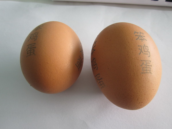 CO2 laser marking - eggs